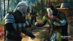 The-witcher-3-wild-hunt-1428995430178466