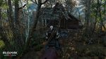 The-witcher-3-wild-hunt-1428995430178467