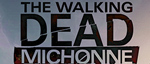 The-walking-dead-michonne-small