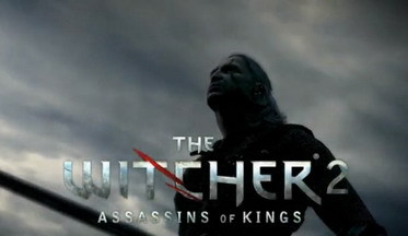 The Witcher 2 скриншот