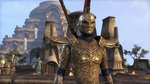 Видео The Elder Scrolls Online: Morrowind - город Вивек